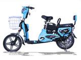 Bici di vendita calda di Electeic piegata 350W