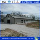 La construcción rápida de diseño moderno edificio de la estructura de acero de la granja de aves de corral y cerdos con bajo presupuesto de la casa