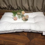 Bargain Cotton with Bleached Best Bed Pillows