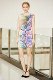 Платье сатинировки переноса плеча падения связи переднее с печатью размещения цифров флористической