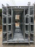 Promenade par l'échafaudage de système de bâti lourd pour le matériel de construction