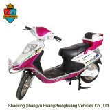 48V 20ah 800W Electric E-Bike Motor Moped Scooters