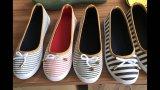 As sapatas lisas as mais atrasadas das mulheres dos lazeres do conforto com tipo do Chambray