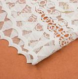 Tissu rigide de lacet de Knit