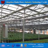 토마토를 위한 공장 공급 Hydroponic 시스템 유리제 온실