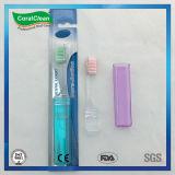 Toothbrush pieghevole portatile di corsa del Toothbrush del Toothbrush di cristallo della casella