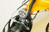 36V 9ah電池が付いている36V 250WのFoldable電気バイク