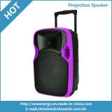 12 pulgadas de plástico Powered DJ caja de altavoces Bluetooth con proyector