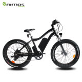 Vente en gros Snow Bike 48V 750W Fat Tire Electric Bike