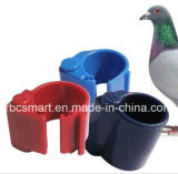La volaille de pied de pigeon sonnent le bétail Lf/Hf de rail 125kHz/13.56MHz d'animal familier d'étiquettes d'animal de RFID/NFC