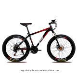 중국 (ly 12)에서 싼 MTB 산악 자전거 공급자