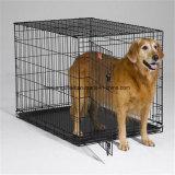 Псарня собаки порошка верхнего качества Coated большая для сбывания (XMM-DC0)