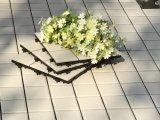 Fácil instalar a telha de assoalho ao ar livre da porcelana do Decking