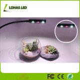 LED Plant Grow Light com Spring 3W Desk Grow Lamp com braçadeira de mola e braço de Gooseneck para planta de interior
