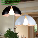 Neuer Entwurfs-dekorative hängende Licht-Blumen-hängende Lampe (GD-7433-1)