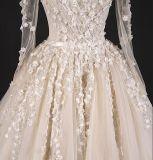 夜会服の中国のウェディングドレスWgf005