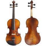 Sinomusik Marken-Satin-Ende geschnitzte oberste gemäßigte Violine