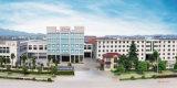 Haute porte de fer de fabrication de Qualitity Chine de porte en acier (FD-009)