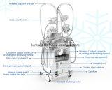 Het nieuwe Efficiënte Beeldhouwende Vet die van het Lichaam van Cryo van de Machine van Cryotherapy Cryolipolysis 5 Handvatten bevriezen