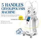Fat Reduction를 위한 5개의 손잡이 Cryolipolysis Fat Freezing Machine Cryolipolysis Slimming Cool Body Sculpting Machine