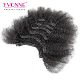 Agrafe crépue d'Afro brésilien dans des prolongements de cheveux humains
