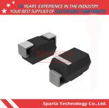 Transistor do circuito integrado de Sr160 Sr1100