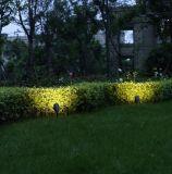 Indicatore luminoso caldo del punto di vendita LED per l'indicatore luminoso esterno del giardino