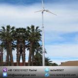 水平の自由エネルギー5kwの風力の価格