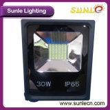 прожектор освещения SMD 30W 3300lm СИД (SLHSMD30W)