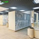 Het compacte Gelamineerde Kabinet van de Kast van de Kunst van de Douane HPL