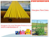 FRP Rod Fiberglass Plant Stent для Sale