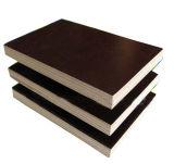 Madera contrachapada Shuttering de la construcción de la madera contrachapada de la madera contrachapada de Concret