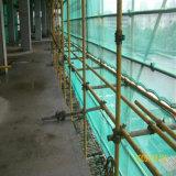 Сеть безопасности PE девственницы лесов конструкции с UV добавкой (YHZ-SFSN03)
