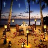 Pared del baile de la llama LED de la lámpara al aire libre del paisaje/luz solares del césped/del jardín de la antorcha (SSL-AL-T96)