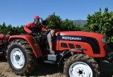 De Leverancier van de Tractor van het Landbouwbedrijf van Lovol van Foton 50HP