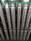 4SD6 깊은 우물 수도 펌프, 관개 수도 펌프, 잠수할 수 있는 펌프