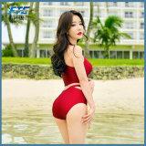2017 선전용 선물 디자인 비키니 수영복