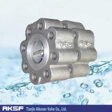 Tipo de alinhamento válvula de verificação do molde Iron/EPDM da porta dobro