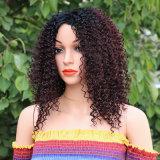 De synthetische Pruiken Afro van de Pruiken 16-30inches van het Haar Lange Kroezige Krullende voor Afrikaanse Kapsel van de Pruiken van Zwarten T1/99j het Synthetische