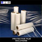 China-Fertigung farbiger transparenter PET Film-Preis die besten Verkäufe! ! !