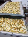 La seta del kelp delle patatine fritte continua l'essiccatore dell'aria calda della cinghia della maglia