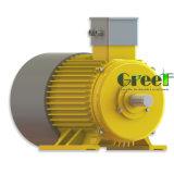generatore magnetico di 5kw 350rpm, generatore magnetico permanente di CA di 3 fasi, uso dell'acqua del vento con il RPM basso