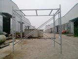 Camminata galvanizzata attraverso il blocco per grafici dell'armatura dalla fabbrica della Cina