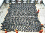 Catena d'ancoraggio galvanizzata con il CERT dell'ABS