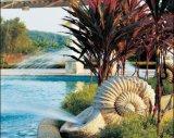 사암 물분사 정원 사각 샘
