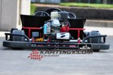 200cc/270cc che la corsa dell'azionamento Chain va Kart con a buon mercato vanno Kart Farmes