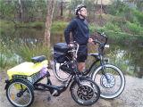 무브러시 허브 모터 풀그릴 관제사에 있는 Bulit를 가진 전기 자전거 장비 48V1000W