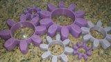 Qualität purpurrotes 98shore ein GR schreiben Polyurethan-Kupplung, PU-Kupplung