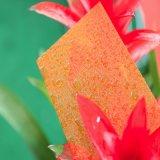 Lexan transparent a coloré la feuille gravée en relief de polycarbonate