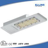 옥외 IP66 LED 가로등 60W 110lm/W